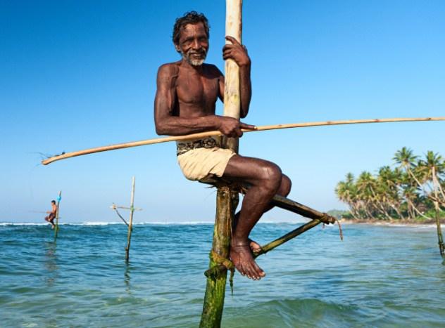 Рыбалка на сваях Шри-Ланка Это сравнительно молодая традиция. Местные жители начали практиковать подобную рыбалку во время Второй мировой войны. Тогда шриланкийцы использовали обломки самолетов и кораблей, чтобы поймать рыбу. Рыбаки сидели на специальных сваях, что позволяло им получать больший улов. К сожалению, цунами 2004 года изменило линию берега и теперь традиция умирает — просто ловить стало неудобно.