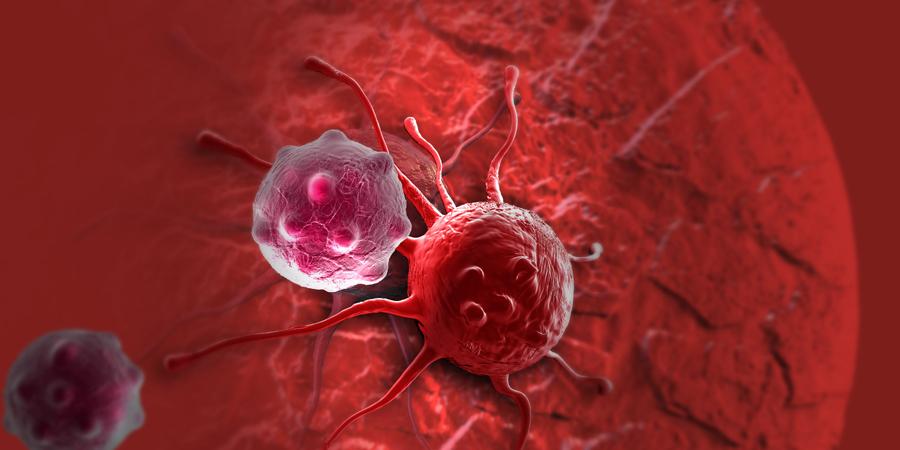 Раковые клетки Каждый час, каждый день ваше тело берет и производит раковые клетки. Это не приводит к развитию опухоли просто потому, что иммунная система их уничтожает. Снижение иммунитета означает одновременное повышение риска заработать рак. Берегите себя, не болейте.