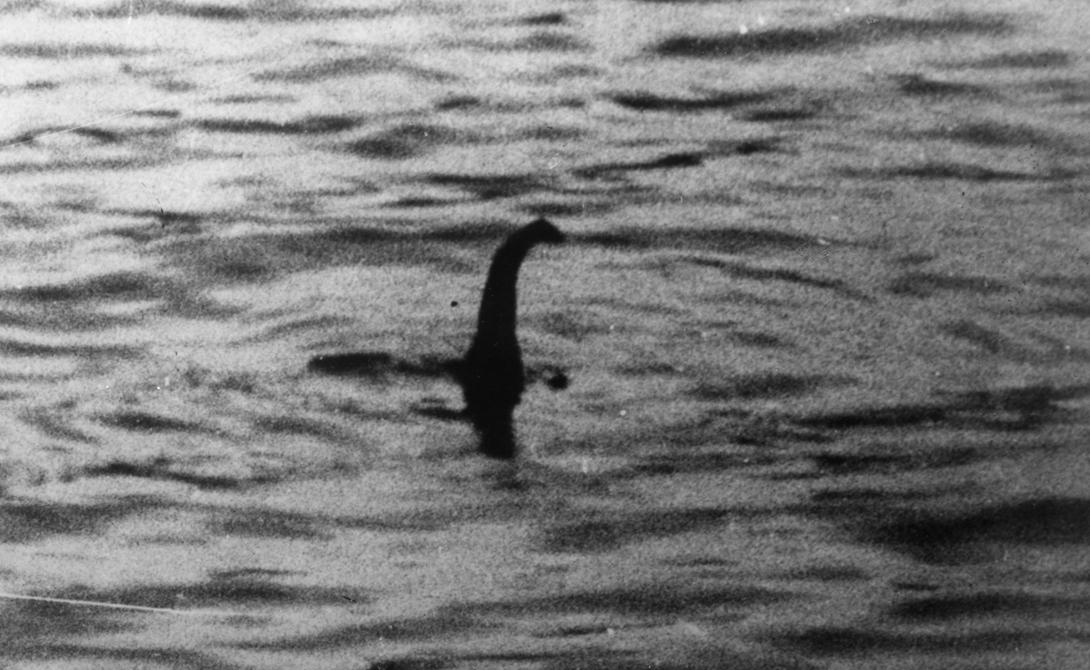 Лохнесское чудовище Самая известная фотография озерного монстра была сделана еще в 1934 году. С тех пор о встречах с Несси отчитались сотни людей, в числе которых есть даже несколько серьезных ученых. В 2014 году история получила новый толчок: на съемках Apple Maps обнаружился странный силуэт, похожий на огромного ящера.