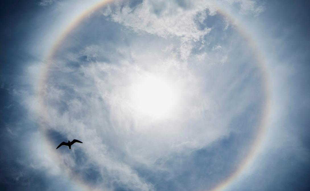 Гало Ореол возникает из-за своеобразного расположения кристаллов льда в облаках, высоко над поверхностью Земли. Это явление особенно привлекательно выглядит на фоне Луны.