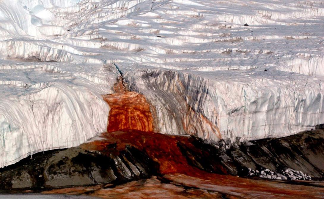 Кровавый водопад Самый настоящий водопад крови падает в одном из самыхзасушливых районов Антарктиды. Он питается подземным озером, воды которого полны бактерий — ученые прикладывают все усилия, чтобы изучить их досконально. Эти бактерии подпитываются сульфатами, а не сахаром, как большая часть живых организмов планеты. Здесь содержится так много железа, что вода буквально ржавеет в воздухе.