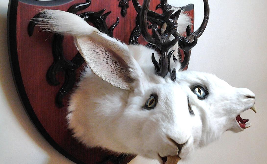 Рогатый заяц Легенда о зайцелопе (предположительно, помесь зайца и антилопы, Jackalope) началась с жителя Вайоминга Дугласа Геррика. Он якобы нашел одного необычного зайца мертвым и повесил голову на стену своего магазина. Однако подобный же миф существовал и раньше. В персидском географическом словаре упоминание об аналогичном животном датировано аж 17-м веком.