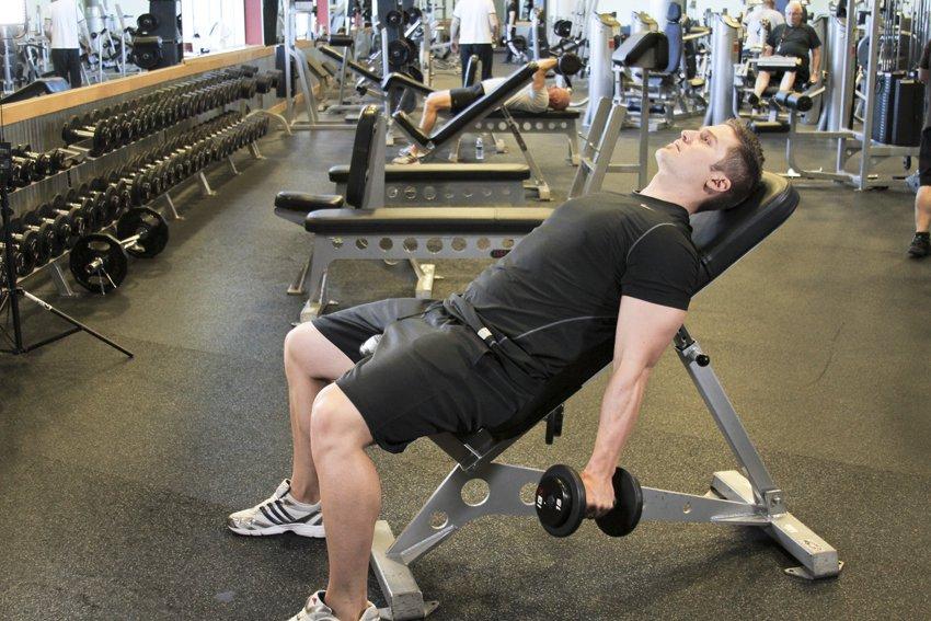 Гантели на наклонной скамье Здесь бицепс получает дополнительную стимуляцию за счет растянутого положения. Попробуйте поднимать гантели с супинацией, так будет задействована и плечевая мышца.