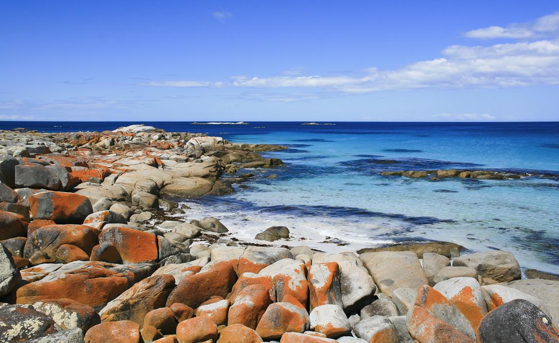 Огненное побережье Тасмания Сюда стоит выбраться каждому, кто предпочитает морское побережье любым красотам высокогорья. Вся тропа проходит сквозь бесконечную череду удивительных своей красотой бухточек, каждая из которых так и манит сделать небольшой привал.