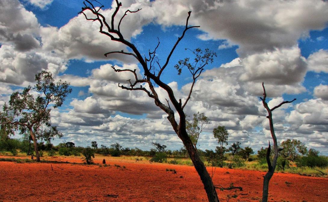 Пустоши Австралия Проводить постоянные замеры в австралийской глубинке достаточно непросто, но этот малонаселенный регион прекрасно известен своим знойным характером, особенно проявляющимся в периоды засухи. Рекорд Пустоши поставили в прошлом году: спутник NASA отчитался о замерах в 70 градусов.