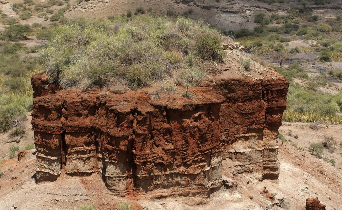 Олдувайское ущелье Расположенное в Северной Танзании Олдувайское ущелье вполне может считаться важнейшим во всем списке. Палеонтолог Мэри Лики практически случайно обнаружила неопровержимые доказательства истиной прародины человечества. Останки Homo habilis — вида, существовавшего более двух миллионов лет назад, заставили ученое сообщество взглянуть на Африку под новым углом.