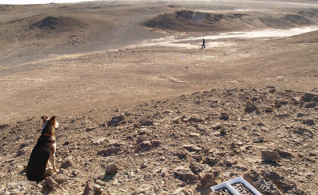 Кратер Хафтон Девон, Канада Один из самых крупных кратеров в мире оставил гигантский метеорит, поразивший Землю более 39 миллионов лет назад. Удар был настолько силен, что в этой местности изменились сами условия жизни. Геология и климат Хафтона получили от ученых маркировку «Марсианских игрушек» — примерно такие же условия будут ожидать колонистов на Марсе. В кратере уже построена подготовительная станция, где будут работать будущие исследователи Красной планеты.