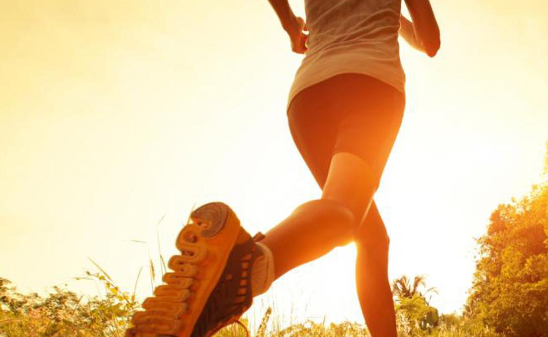 Активность По счастью, современные люди все чаще начинают заниматься спортом — следить за собой сейчас в тренде. Сердечно-сосудистой системе очень важна правильная тренировка, повышающая ее работоспособность. Если времени на фитнес-клуб совсем не хватает, займитесь хотя бы бегом. Получасовая утренняя пробежка зарядит вас энергией и укрепит сердце.