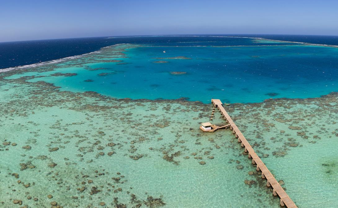Национальный парк Санганеб Судан Национальный парк представляет собой коралловый остров, расположенный в 25 километрах от побережья Судана. В список ЮНЕСКО также попала бухта Дунгонаб и острова Мековар, прославившиеся своими мангровыми лесами.
