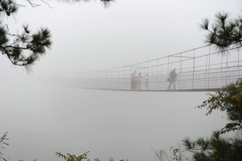 Прыжок Веры Сам мост открылся только в начале августа и администрация парка планирует ввести еще несколько инновационных развлечений, доступных местным туристам. Честно говоря, из инноваций в новых аттракционах будет лишь усиленные меры по безопасности: один из главных будет представлять собой прыжок на самой большой тарзанке мира.