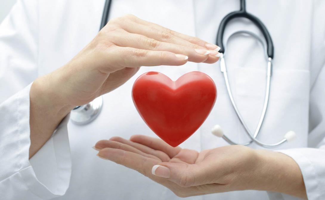 Сверхчеловеческое здоровье Голодание «перезагружает» вашу иммунную систему, предохраняя ее от повреждения свободными радикалами. Диета выступает своеобразным регулировщиком воспалительных состояний в организме. При размеренном питании уровень кровяного давления находится на стабильно высоком уровне, также увеличивается содержание гормонов роста.