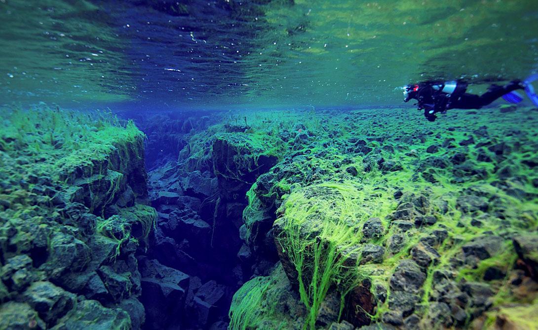 Сильфра Исландия Единственное на Земле место, где можно поплавать между двумя континентальными плитами. Трещина Евразийской и Североамериканской плит расширяется на 2 сантиметра ежегодно — уникальная возможность потрогать основание нашей планеты своими руками.
