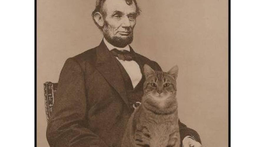 Абрахам Линкольн Линкольн был настолько поглощен своими кошками, что это обижало его жену, Мэри Тодд. В Белом доме американский президент обязательно брал к обеду одного из своих котят и кормил его прямо на столе с золотой вилки, не обращая на окружающих ни малейшего внимания.