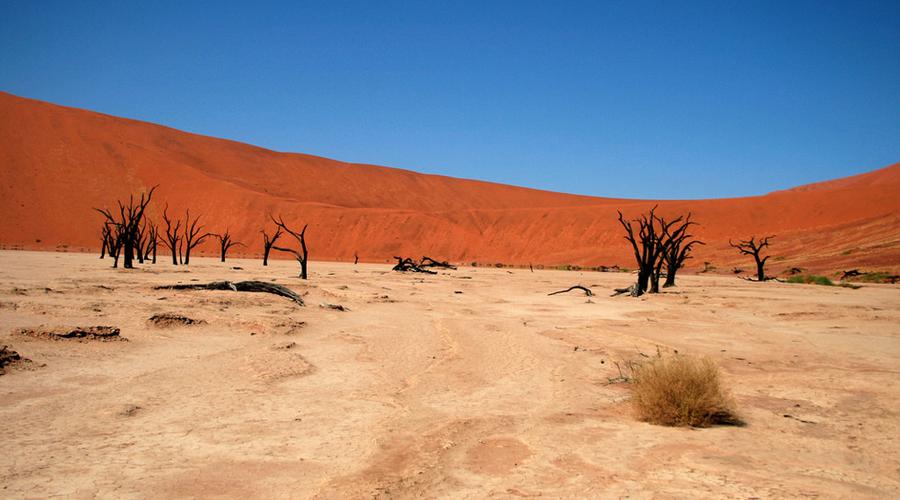 Деад Фляй Намибия Высокие красные дюны пустыни Намибия довольно близко напоминают марсианский ландшафт. Песок здесь буквально заржавел за несколько тысяч лет. Среди этих потусторонних пейзажей особенно выделяется мертвая долина, Dead Vlei. Около десяти тысяч лет назад дюны отрезали эту территорию от реки и деревья засохли, оставшись мертвыми памятниками самим себе.