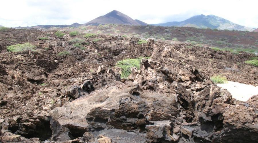 Остров Вознесения В течение многих лет остров Вознесения оставался лишь куском бесплодной пустоши. Обилие лавовых полей, сухой климат и недостаток пресной воды показался неприветливым мореплавателям-первооткрывателям, однако все изменил смелый план ботаника Джозефа Далтона Хукера. Он высадил на острове деревья, в надежде, что они привлекут дождь, а он уже сделает почву плодородной. Удачный результат эксперимента можно назвать первой в истории попыткой терраформирования.