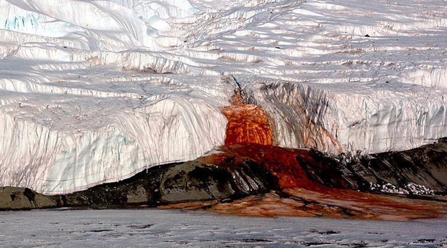 Кровавый водопад Антарктида Высота в пять этажей и вода кроваво-красного цвета делает водопад Blood Falls одним из самых удивительных чудес нашей планеты. Примерно два миллиона лет назад ледник запечатал микроорганизмы, остававшиеся в изоляции до нашего времени. Теперь, когда ледник начал таять, они ожили и придали странный цвет воде Blood Falls. Реинкарнация такой сложной экосистемы доказывает, что жизнь может существовать и на Марсе.