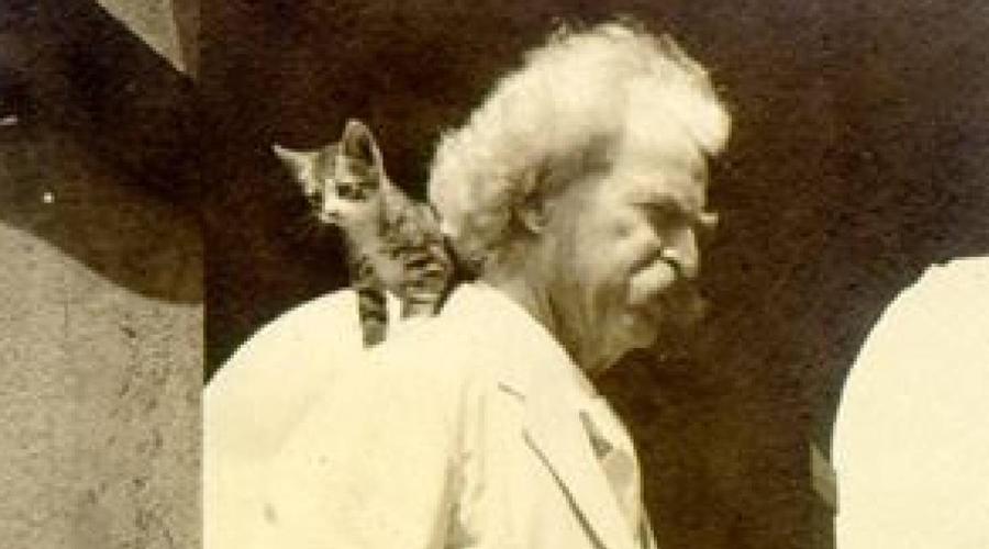Марк Твен Марка Твена часто представляют как одного из самых безумных котовладельцев в истории. В доме писателя жили 19 кошек — Твен убеждал друзей, что они гораздо лучше людей. Писательская карьера вынуждала его много путешествовать, а большую часть гонораров он спускал на выплату содержания своим котикам.