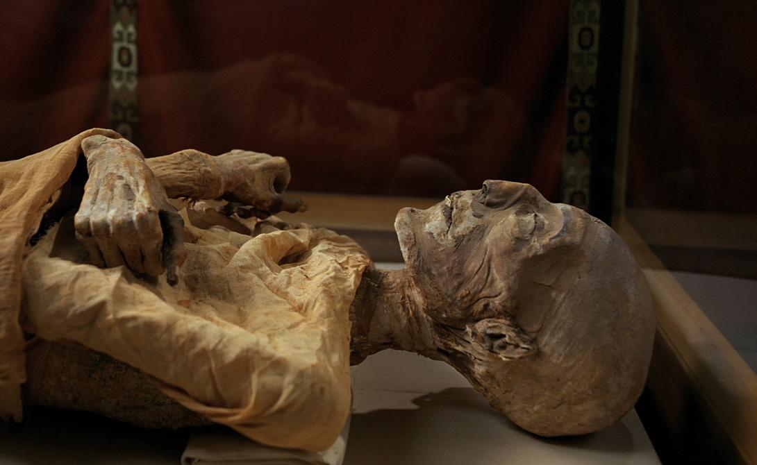 Египетская мумия Несколько спасшихся матросов рассказывали прессе и полиции довольно странную историю о египетской мумии, якобы поднятой на борт перед самым отплытием. Таинственный ящик перевозил в Америку лорд Кэнтервиль, настоявший на том, чтобы ценный груз хранился прямо на капитанском мостике.
