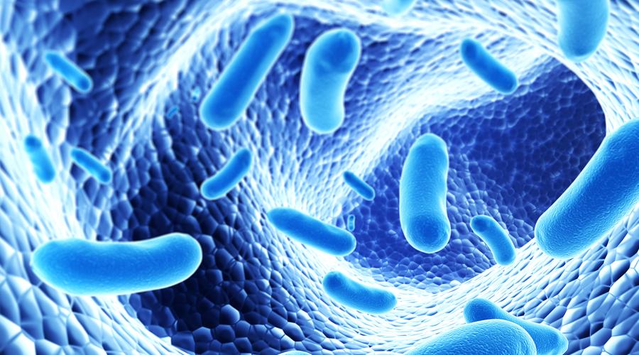 Пробиотики Вердикт: лучше не надо Пробиотиками называют бактериальные добавки, польза которых не доказана на научном уровне. Идея фармкомпаний понятна: нам транслируют, что пробиотики поддерживают гармоничное существование триллионов бактерий цветущих в нашем кишечнике. Но знаете что? Обычный йогурт может сделать то же самое.