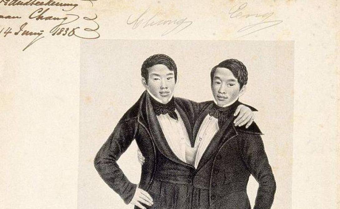 Чанг и Энг Бункер Сиамские близнецы Чанг и Энг родились в Таиланде (Сиам, на ту пору) в 1811 году. С 1829 братья путешествовали с гастролями по всему миру и даже давали медицинские лекции. Чанг и Энг завоевали такую славу, что определение «сиамские близнецы» было признано в качестве научного термина. В конце концов близнецы прикупили домик в американской глубинке и даже женились, чем вызывали целый поток негодования со стороны пуританской общественности. Жены близнецов также были сестрами, правда обычными, и родили Бункерам целых 20 детей.