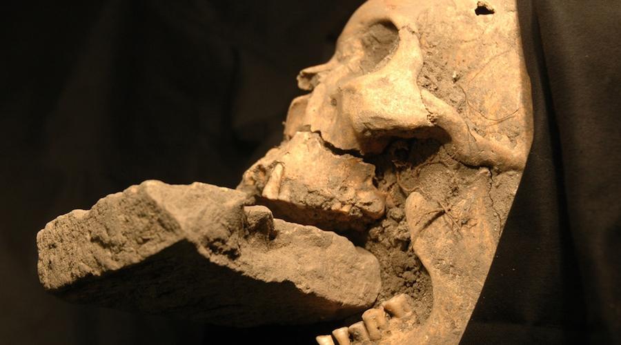 Кильтешин Ирландия В 2009 году у ирландского города Кильтешина были обнаружены два скелета, грудная клетка которых была пронзена стальными кольями. Зубы каждого сжимали камень, а руки были связаны за спиной. О странной находке даже сняли документальный фильм — оказалось, что коренные жители этой местности всегда знали о живущих неподалеку вампирах, а в средние века тут были даже целые семьи, специализирующиеся на выслеживании и умерщвлении кровососов.