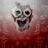Амеба, которая питается человеческим мозгом