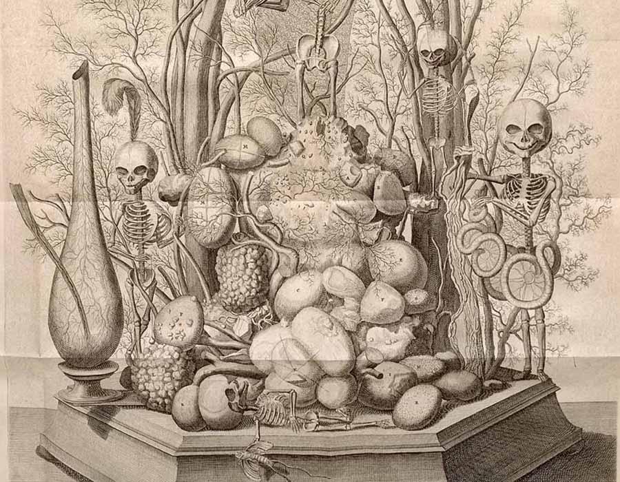 Петр I и мертвый младенец В числе препаратов Рюйша значились такие, как «рука ребенка, держащая между пальцами ветку с фруктами» и «трехмесячный плод мужского пола в пасти ядовитейшего животного». Но больше всего посетители поражались не искусным диорамам, а идеально забальзамированным младенцам, заботливо уложенным в гробики. Иллюзия жизни была воссоздана настолько точно, что Петр I попав в гости к профессору не удержался и поцеловал одного из усопших.