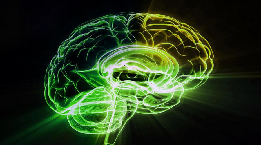 Другой путь Йорги рассказал и о другом способе поддержать остроту ума. По уверению врача (а к его мнению, между прочим, прислушался целый континент), разрекламированные «тренировки мозга» не работают от слова совсем. Вместо того, чтобы тратить время на головоломки, Йорги рекомендует провести его в медитативных практиках: осознанность помогает человеку мыслить четко и ясно.