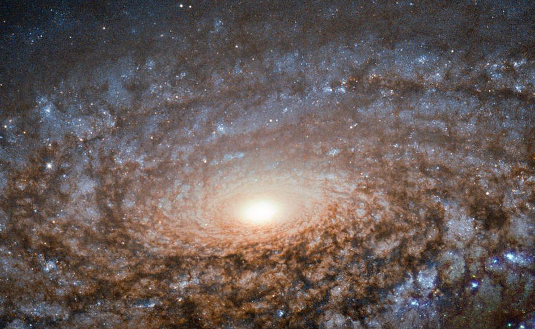 NGC 3521 Эта флокулянтая спиральная галактика выглядит на снимке пушистой из-за своих звезд, которые светят сквозь пыльные облака. Хотя снимок кажется невероятно отчетливым, на самом деле галактика находится на расстоянии в 40 миллионов световых лет от Земли.
