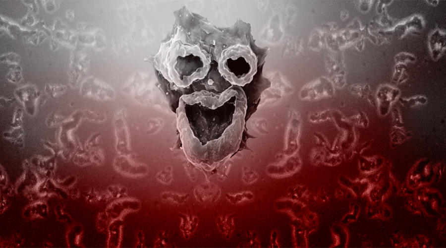 Атака на разум Устроившись поудобнее под черепной крышкой, амеба начинает поглощать клетки мозга. При этом она производит специальный белок, который способствует скорейшему распаду еще здоровых клеток. В скором времени участок мозга рядом с паразитом оказывается полностью разрушен. Обычно на этой стадии человек еще остается в сознании, вынужденный терпеть ужасные ощущения.