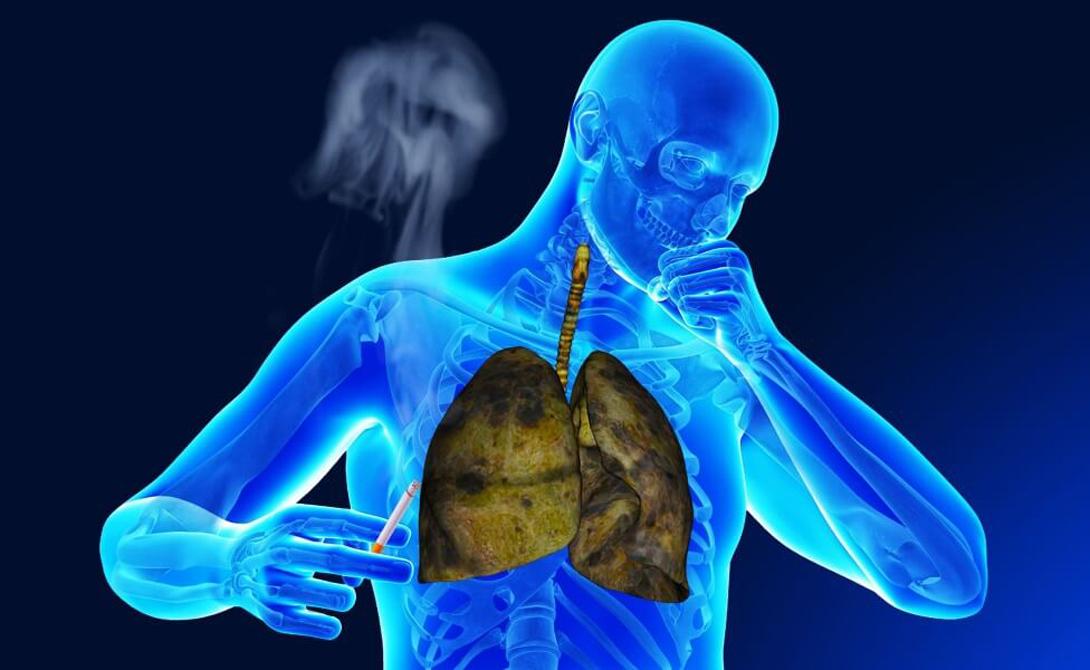 Глубокое дыхание Легким нужно давать работать. Лучше всего будет начать практиковать утренние пробежки, совмещенные с дневными медитативными упражнениями. При глубоком дыхании приток крови к легким увеличивается в разы, что приводит к выводу из них токсинов и смол.