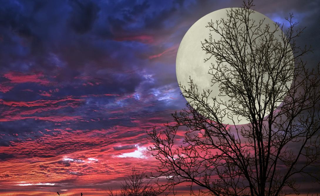 Автор Странным явлением заинтересовался американский астроном Ричард Нолл. Он провел все необходимые исследования и доказал, что суперлуние не является всего лишь визуальным эффектом, как до того считалось в ученом мире. Термин придумал он же, однако многочисленные астрологи приписывают «суперлуние» себе, что, конечно же, правдой не является.