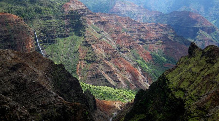 Опасные джунгли Гавайские джунгли туристы не считают опасными. Сюда приезжают любители комфортного аутдор-отдыха, которые зачастую ведут себя слишком расслабленно. Доктор Стивен Рейсберг привез на Гавайи свою молодую жену и отправился показывать ей местные красоты, пренебрегая предупреждениями о реальной опасности дикой природы. Эту парочку больше никто никогда не видел, а начавшееся расследование вскрыло информацию о десятках аналогичных случаев: ежегодно на островах пропадают туристы и полиция просто не в силах найти даже их останки.