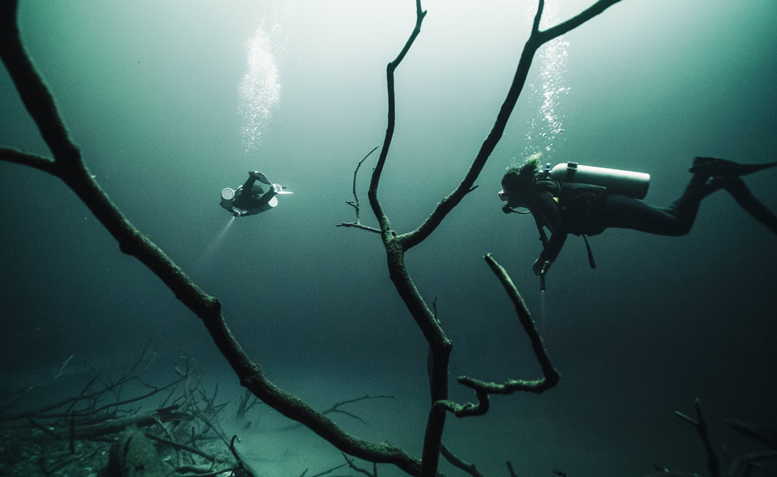 Мекка дайверов Дайверы любят это место за его мистический ореол и красоту, сравнимую со сказочным сном. В самом деле, подводный ландшафт единственной в мире подводной реки навевает смутные ассоциации с инопланетными пейзажами: на глубине нескольких метров течет самая настоящая река, вдоль которой будто бы растут реальные деревья.
