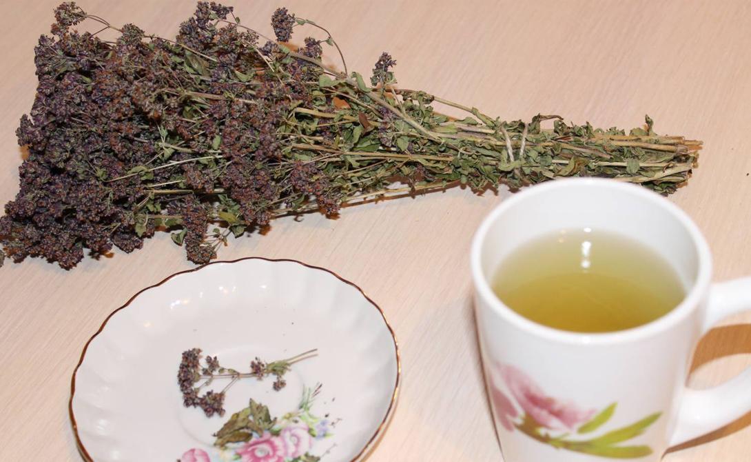 Зеленый чай Переходите с привычных напитков на зеленый чай. В его листьях содержится крайне полезный антиоксидант катехин, уже зарекомендовавший себя действенным средством борьбы с раком.