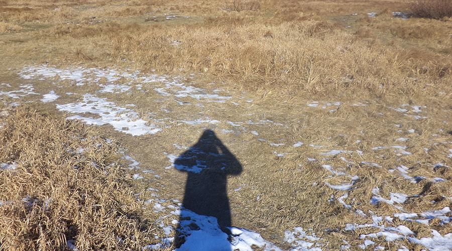 Солнечная навигация Что станете делать, если Google Maps перестанут загружаться? Между тем определить направление по солнцу — простейшая задача, и, решив ее, можно выбраться из сложной ситуации. Если требуется узнать направление утром или вечером, то все что нужно — так это посмотреть на свою тень. Она будет указывать на запад утром и на восток вечером.