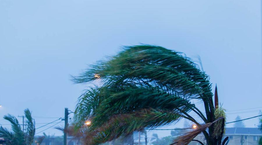 Пережить ураган Скорость урагана может достигать трехсот километров в час. Шансов выжить, прямо скажем, немного. Тем не менее, попытаться можно. Не стойте в дверных проемах во время бури, а если у дома есть подвал — немедля отправляйтесь туда. На открытом месте старайтесь добраться до любого автомобиля: стальная коробка с ремнями безопасности все лучше, чем ничего.