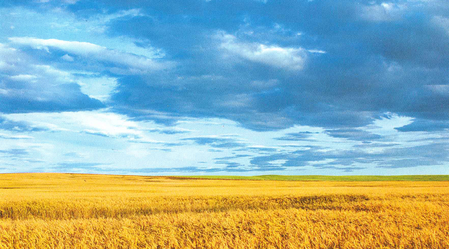 Зарождение нации Одна из наиболее правдоподобных научных теорий этногенеза украинской нации (ее поддерживал академик Борис Флора), гласит, что украинцы происходят от единой древнерусской народности, распад которой длился вплоть до Нового времени. Прямыми предками украинцев являются славянские племена: поляне, древляне, тиверцы, северяне, уличи и белые хорваты. Они в свое время вошли в Киевскую Русь, а затем и в Галицко-Волынское княжество.