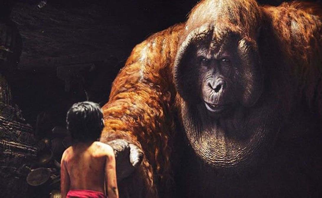 Гигантопитек Эти приматы жили примерно 9 миллионов лет назад и вполне могли бы стать предком современного человека. Кинг-Конг доисторической эпохи вырастал до пятиметровой высоты и веса в несколько центнеров: по сравнению с этой обезьянкой любые рассказы о йети кажутся смешными байками.