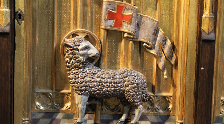 Восточно-европейское расселение Тевтонцы пришли в Восточную Европу для борьбы с половцами. Их пригласил король Венгрии Андраш II, предложив рыцарям ордена разместиться на юго-восточной границе Трансильвании. Спустя несколько лет здесь появится своя автономная область, укрепленная пятью замками: Мариенбург, Шварценбург, Розенау, Кройцбург и Кронштадтстанут для ордена отличным плацдармом для дальнейшей экспансии.