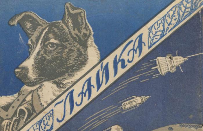 Мертвые новости Новостные источники СССР передавали данные о самочувствии собачки еще семь дней после ее смерти. Затем народу сообщили о «запланированном» усыплении космонавта, что неожиданно вызвало целый шквал критики — никто не предупреждал, что Лайка на Землю не вернется.