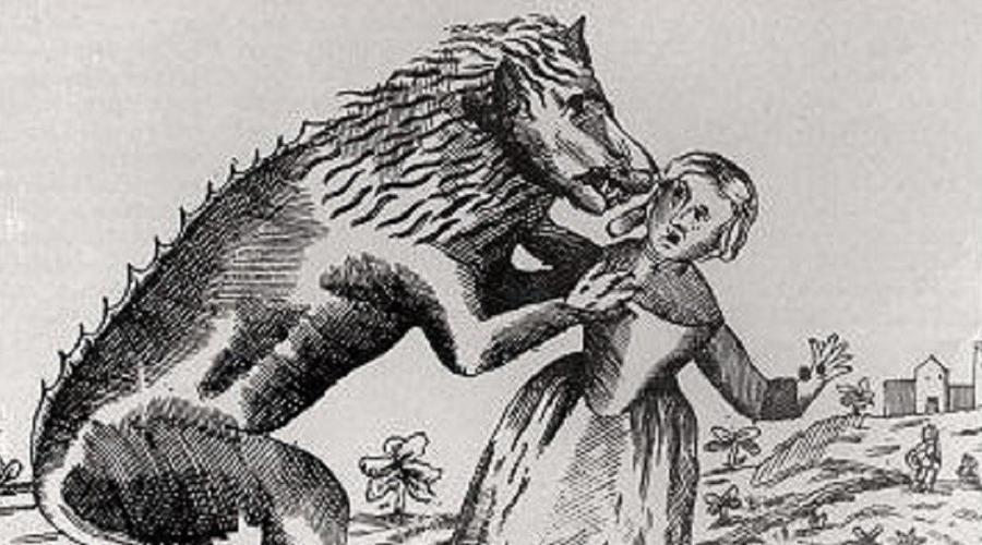 Мишель Верден В 1521 году Жан Бьен, инквизитор католической церкви, приговорил Мишеля Вердена к сожжению на костре за совершенные им убийства. Мишель служил егерем в лесу, где уже целый год пропадали люди. Один из прохожих подвергся нападению волка, но сумел отбиться, ранив того в лапу. Добравшись до хижины егеря, прохожий с удивлением и ужасом обнаружил раненного человека, у ног которого лежала волчья шкура.