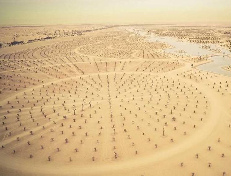 Озера Аль-Куадра, Дубай