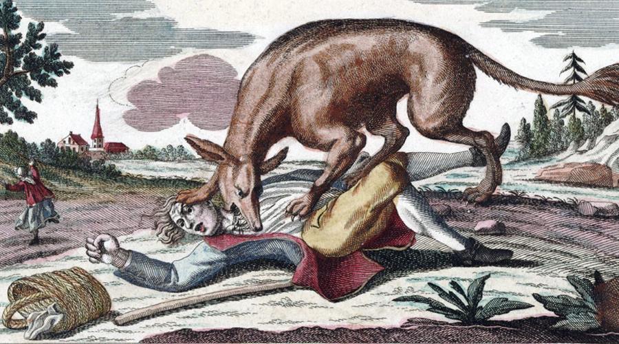 Жиль Гарнье Каннибал и серийный убийца Жиль Гарнье даже на костре продолжал утверждать, что все убийства совершила его волчья ипостась. Этот человек хладнокровно убил два десятка детей, и путал следствие с 1571 по 1573 год. Удивительнее всего стали клочья странной, не похожей ни на что шерсти, найденной сыщиками на месте каждого преступления.