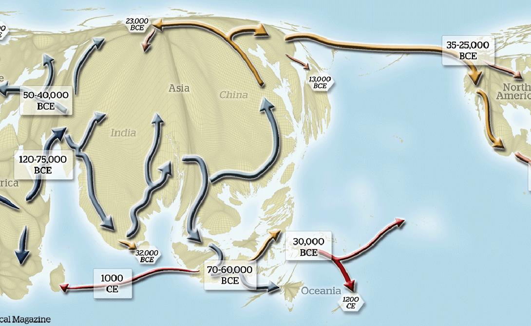 Откуда мы пришли и куда мы идем Эта карта иллюстрирует миграцию человечества по всей Земле, от Африки до Австралии. Здесь же показаны прогнозируемые точки повышения плотности населения (картограф работал над базовой картой, которая отображает настоящее положение дел на сегодняшний день). Команда исследователей перерисовывает эту карту каждые несколько месяцев — так часто происходят новые открытия о происхождении человека.