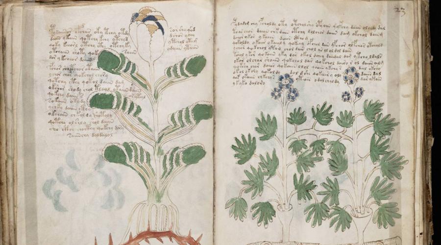 Рукопись Войнича Иллюстрированный кодекс датируют 1404 годом, то есть написан он был в эпоху раннего Возрождения. На страницах рукописи нет ни одного достоверного изображения земных животных и язык, которым она написана, не может быть расшифрован. Считается, что неведомый алхимик специально разработал таинственный, не существующий в реальности, но имеющий смысл язык.