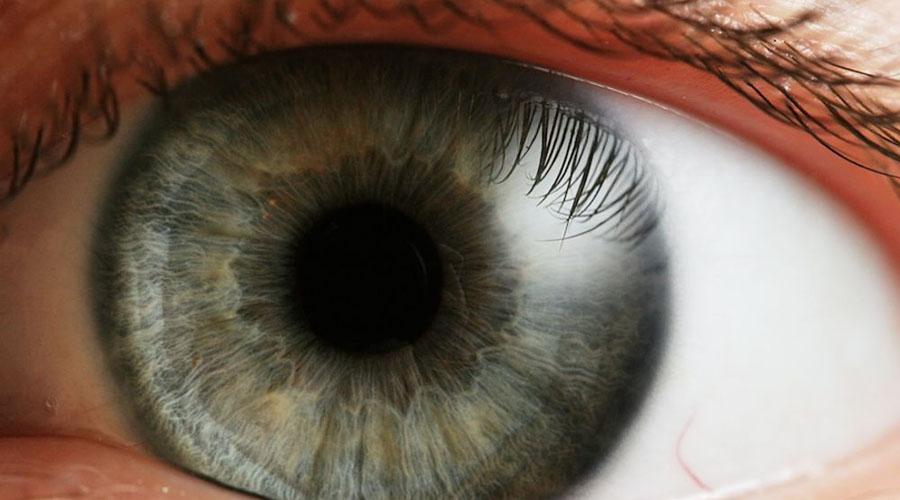 Слой Дуа Совсем недавно офтальмологи открыли новый слой в глазах человека. Он находится за роговой оболочкой, и его толщина составляет всего 15 микронов (1/1000 000 метра). Скорее всего, слой Дуа сможет помочь ученым точне определять причину глазных заболеваний.