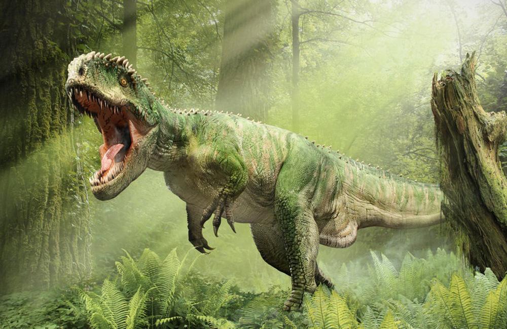 Аллозавр Внешне аллозавр напоминает более известного нам гиганта, тираннозавра. Но в отличие от него, аллозавры практиковали охоту стаей: представьте себе встречу на узкой тропинке с компанией зверушек, достигающих трех метров в холке.
