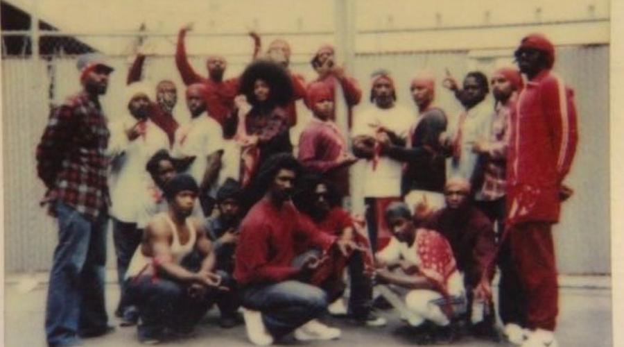 United Blood Nation Коротко банда называется просто Bloods. В тюремной системе Нью-Йорка они занимают главенствующую роль. Инициация подразумевает, что новичок должен пролить кровь своими руками: человек берет бритву, идет на улицу и полосует всех подряд. Желательно, по лицу.