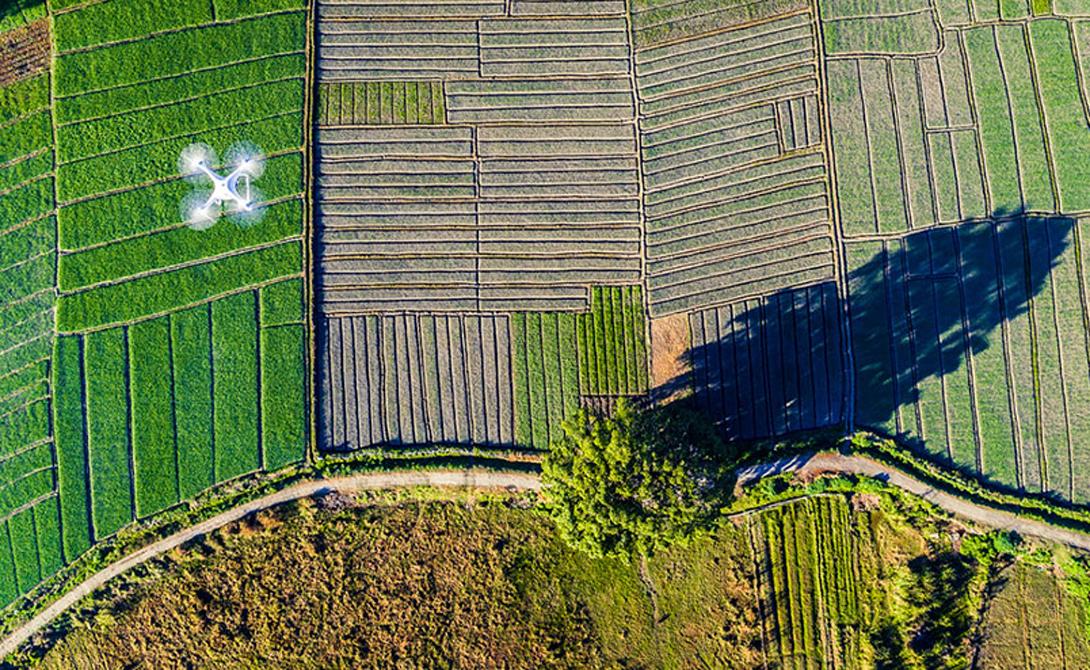 Призрак Земли Третий приз в категории Enthusiast Drones In Use